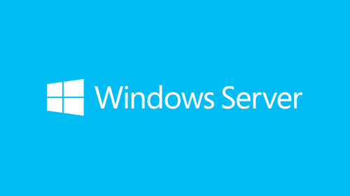 Microsoft Windows Server 2019 CAL 1 User